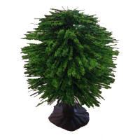 Javis Model Trees - Spring Green Orchard Tree - JT12