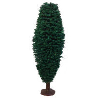 Javis Model Trees - Poplar Tree - JT4