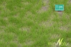 MiniNatur Model Scenics - Long Tufts Spring - 727-31S