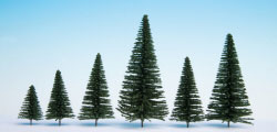 N26930 - Noch - Hobby Trees - Fir with Planting Pin 5-14cm (10)